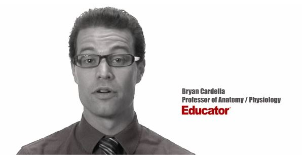 Blood Anatomy Physiology Educator