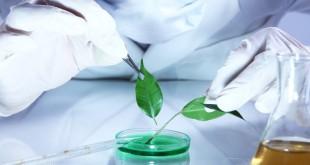 What is biochemistry 2