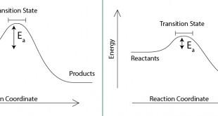 Organic Reactions 1-02-01-01