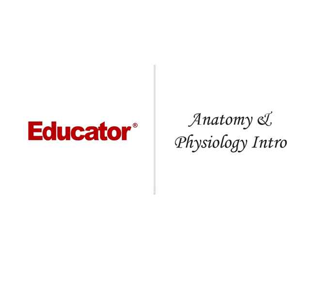1. [Introduction to Anatomy & Physiology]   Anatomy & Physiology ...