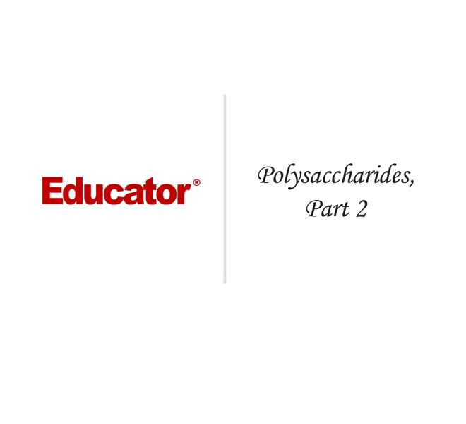31 Polysaccharides Part 2
